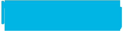 Netability_Logo_homepage